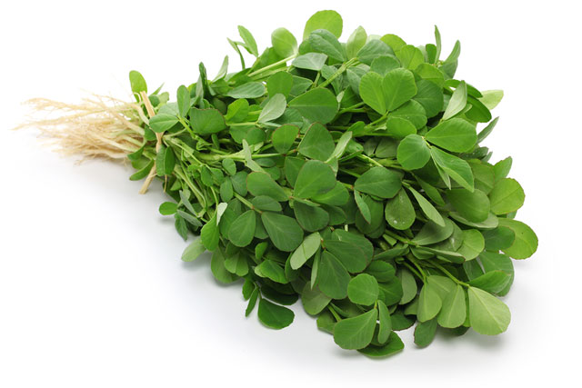 fenugreek-leaves-59779868
