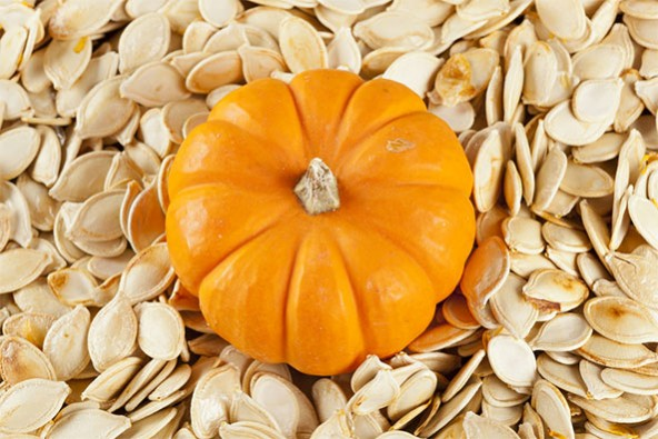pumpkin-seeds-592x395
